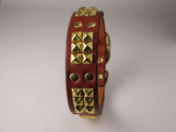 Cerberus' Brass Leather Dog Collar