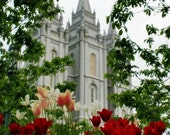 16X 20in print on Canvas LDS Temple