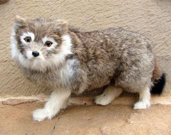 Miniature Animal Siberian Husky in brown colors