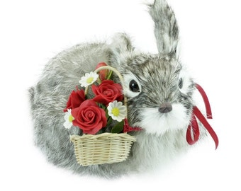 Silver Gray Rabbit with Red Roses and White Daisy in Basket, fur animal