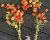 Two Beautiful Dried Green and Orange Chinese Lantern Bouquets