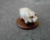 Tiny Pig Sculpture