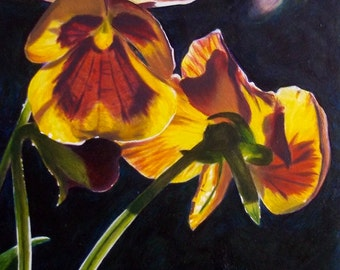 Pansy II. Original Oil Painting.