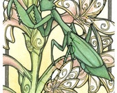 SECONDS SALE - Slightly Imperfect Print - Art Nouveau Praying Mantis 4x6 Print