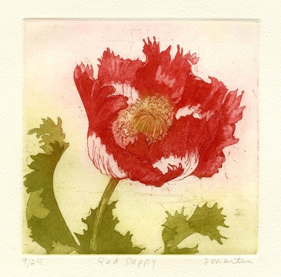 Red Poppy, Original Etching