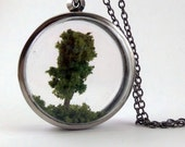 Tree Terrarium Necklace - Adopt a Tree No.15 - FREE Shipping