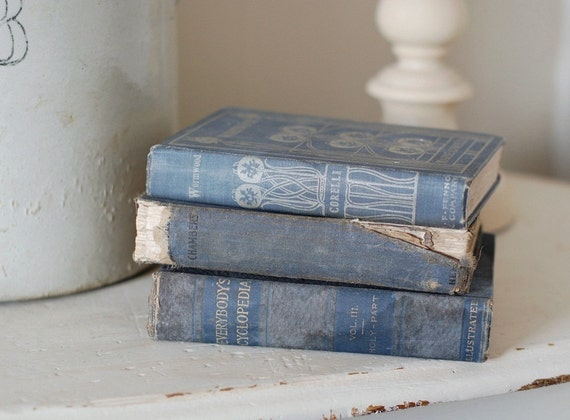 Set of 3 Antique Books in Shades of Muted Blue
