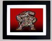 RESERVED LISTING Framed University of Maryland Terrapins Art Logo Print (11x14)
