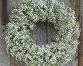 "1 - 12"" Babies Breath Wreath - Dried Flowers - Great For Weddings!"