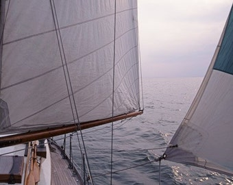 Wooden Sailboat Under Sail, Before the Wind. A Clasic Sailing Photo of a Classic Robb Designed Yacht