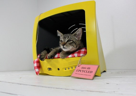 Television Cat Bed