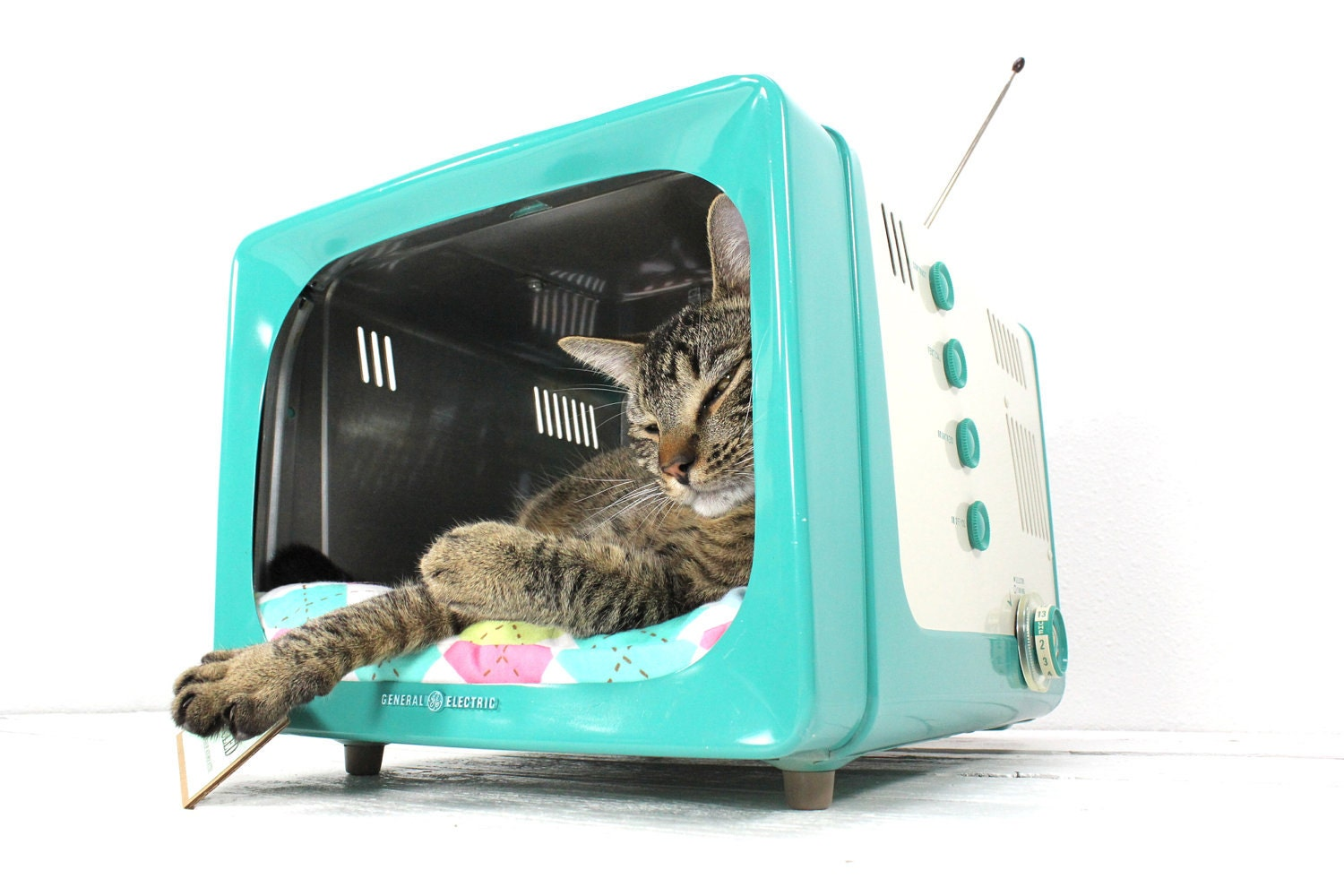 Upcycled Vintage General Electric Tv Pet Bed