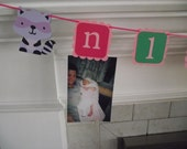 Woodland Animal birthday, picture/photo tag banner - add your childs first year photos, Pink, Purple, squirrel, raccoon, nature Party