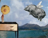 Flying Fat pig surreal collage  'Pig flys past Stylish Interior' Print one of only 25. Free Postage
