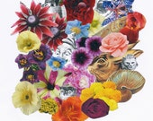 Bouquet by 'Salvador Dali' florists to the Surrealists. Limited Edition print one of only 25. FREE Shipping