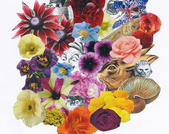Bouquet by 'Salvador Dali' florists to the Surrealists. Limited Edition print one of only 25. FREE world Shipping