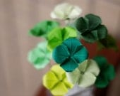 Lucky You -Mini Bouquet of 12 Origami 4 Leaf Clovers