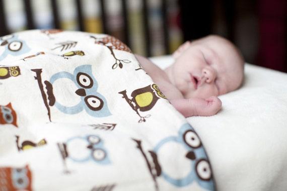 Baby Blanket/Owls/Chocolate/Minky