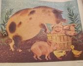 Vintage Family Circle Animal Poster 13 x 16 - Circa 1958