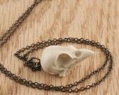 sparrow skull necklace - bone white on gunmetal