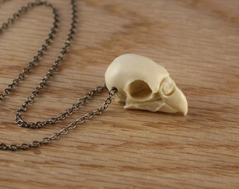 parakeet bird skull necklace - bone white on gunmetal