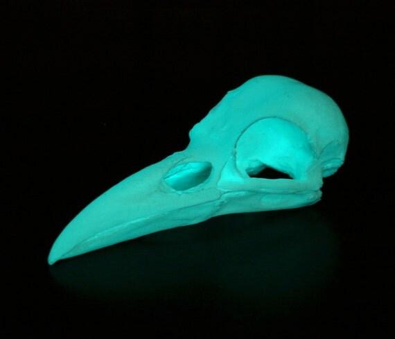 glow in the dark crow skull - aqua