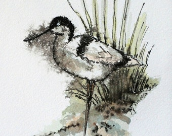 "Beach shore bird watercolor, original animal art, 4 1/2"" x 6"" long billed bird art, pen and ink, small format art, abstract avian art"