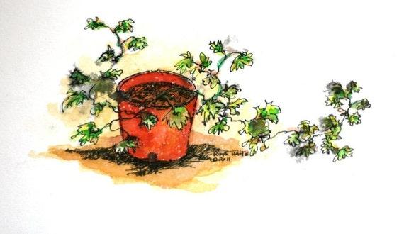 "Original watercolor ivy still life 7"" x 4"" green red flower pot small format art contemporary"