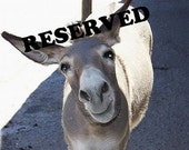 Reserved for Monica T