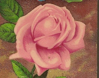 Vintage Postcard Pale Pink Rose on Vintatge Birthday Postcard 1912 Cannon Falls Minn Cancel
