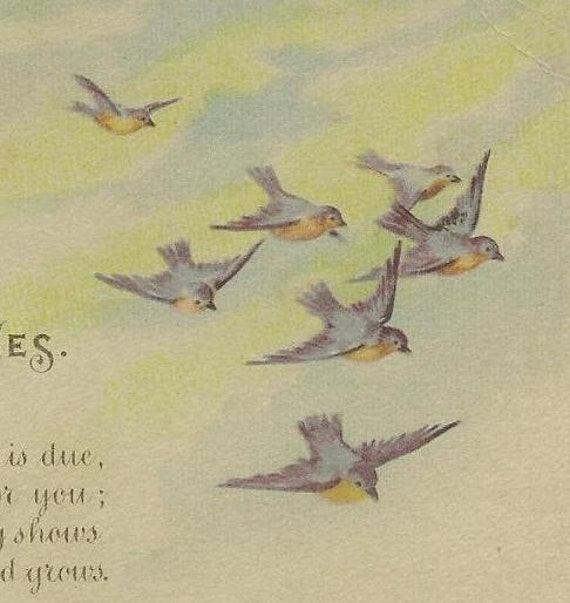 Flock of Bluebirds on Vintage Gartner and Bender New Year's Postcard cancelled Watertown NY Dec 1922