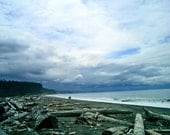 Dungeness Spit-11x14 Photograph-Washington Coast