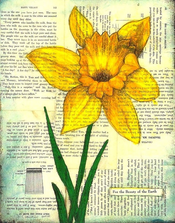Books on Daffodils: Some Titles For the Interested Amateur Grower.