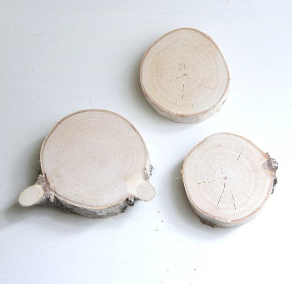 white birch wood slices -  set of 3
