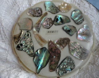 Vintage Souvenir Trivet from Hawaii with Abalone Shells under Resin