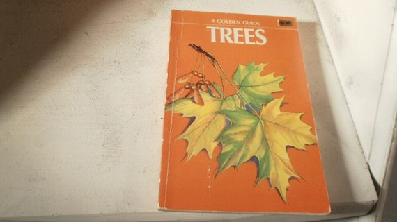 Golden Nature Guide full color illustration to 143 North American Tree species