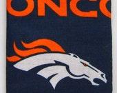 Denver Broncos Eyeglass and Sunglass case