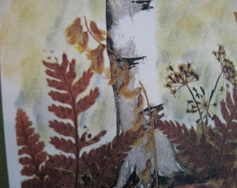 Watercolor White Birch Notecard