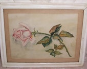1909 ANTIQUE Pink ROSE Water Color Painting...Signed