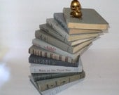 Shades of Gray Books Instant Library Collection by Color Bundle 12 Vintage Decorative Books Photography Props Grey