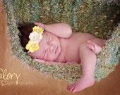 Photoprop for GIRL Newborn Baby Hammock photo prop, Moss Green with Beige fur trim