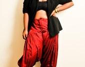 Crimson Shimmer  Harem Pants