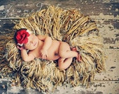 All Fringe Infant Photographer Prop Nest in Natural Shades(Almond Granola Colors),Framed Photography