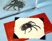 Spider Clear Polymer Rubber Stamp