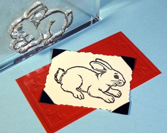 Bunny Rabbit Clear Polymer Stamp