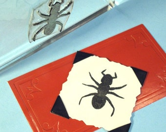 Ant Clear Polymer Rubber Stamp