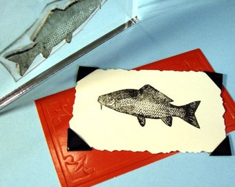 Fish Clear Polymer Rubber Stamp