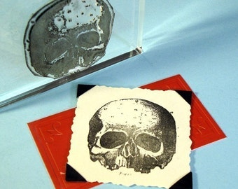 Human Skull Clear Polymer Rubber Stamp