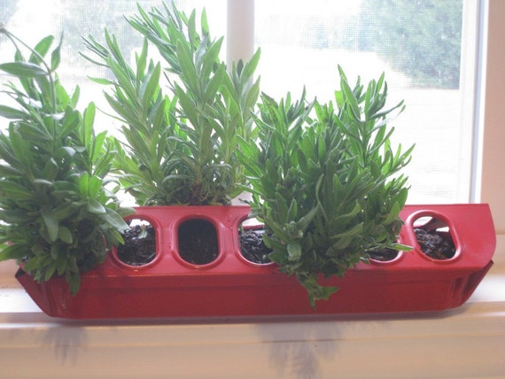 Upcycled Poultry Herb Planter Center Piece