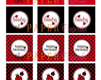Printable Party Toppers - Little Miss Ladybug Theme - DIY Printables from The Paper Cupcake